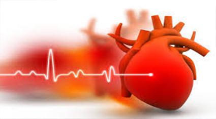 tension arterielle normale